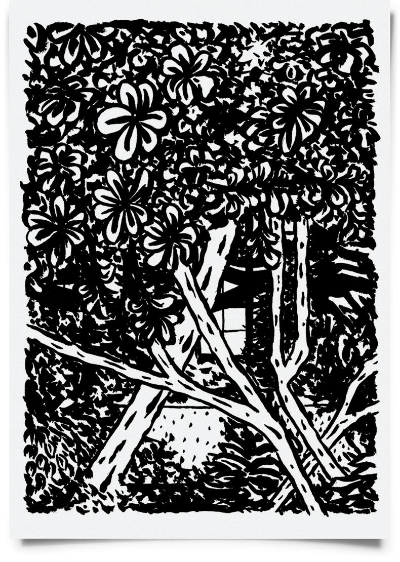 paulo-patricio-casa-beires